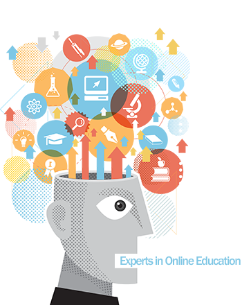 Experts in Online Education